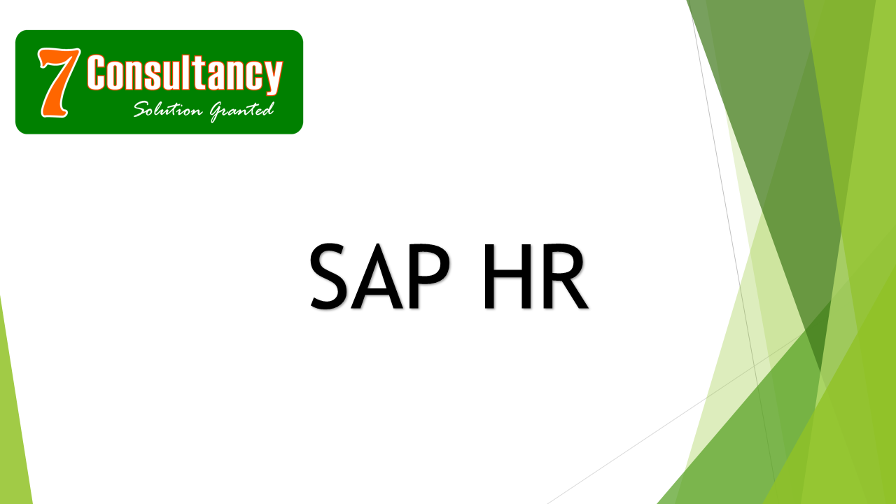 WHAT IS SAP HR